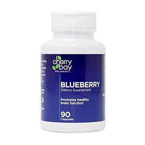 Blueberry Dietary Supplement 480mg | 90 Count Bottle | Non-GMO & Gluten Free | Helps to Maintain Healthy Brain Function