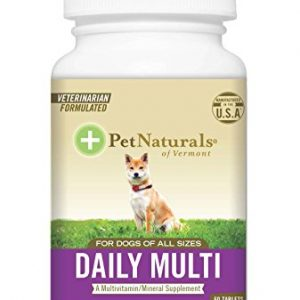 Pet Naturals of Vermont – Daily Multi for Dogs, Multivitamin Formula, 60 Chewable Tablets