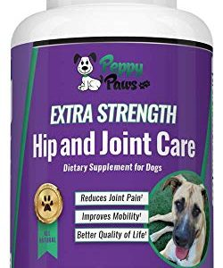 Glucosamine Chondroitin for Dogs with MSM – All Natural Hip and Joint Supplement – Improves Mobility & Hip Dysplasia – Dog Arthritis Pain – Joint Pain – Reduces Inflammation – Beef Flavor Tablets