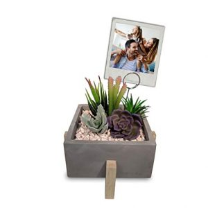 Artificial Succulent Plants in Cement Pot on Wood Stand with Picture Frame or Note Holder, Desk Plant, Table Plant, for Office Decor, Home Decor, Gifts