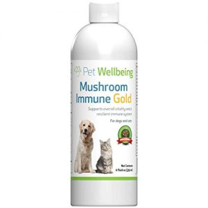 Pet Wellbeing Mushroom Immune Gold – Natural Alternative Support for Dogs with Cancer – 8oz (236ml)