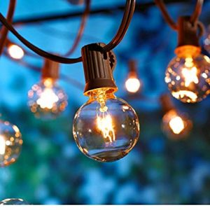 Better Homes and Gardens 20 CT String Lights Clear Glass Globe Outdoor Indoor (Brown Wire)