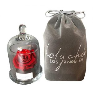Forever Rose Beauty and The Beast Flower: Preserved 3″ Enchanted Decor Red Rose in a Glass Dome – Chic Roses/Flowers – Cool Decorations for Bedrooms or Mom Birthday – Bedroom Accessories for Women