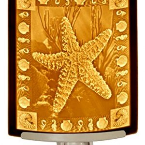 Starfish – Curved Porcelain Lithophane Night Light