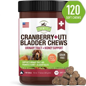 Cranberry Supplement for Dogs -120 Grain Free Dog Treats – Cranberry Chews for Urinary Tract Infection Treatment UTI Relief Bladder Control Support UT Incontinence – D-Mannose + Organic Echinacea, USA