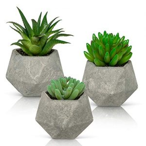Ashbrook Outdoors Artificial Succulent Plants with Pots (Set of 3) | 3 Faux Plants in Potted Light Gray Succulent Planters | Modern Home Décor Accents for The Office, Desk, Living Room, and More