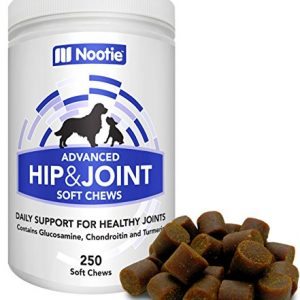 ❶ Glucosamine Chondroitin for Dogs – 250 Training Size Dog Treats – Daily Chewable Dog Glucosamine with Tumeric – MSM – Hip and Joint Soft Chews 250 ct -2 Month Supply – All Breeds and Sizes USA