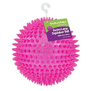 """Gnawsome 4.5"""" Spiky Squeaker Ball Dog Toy – Extra Large, Cleans Teeth and Promotes Good Dental and Gum Health for Your Pet, Colors will vary"""