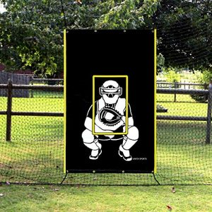Vanta Sports Baseball Softball Heavy Vinyl 4×6 Backstop Net Saver with Catcher Image and Pitching Zone Target Trainer